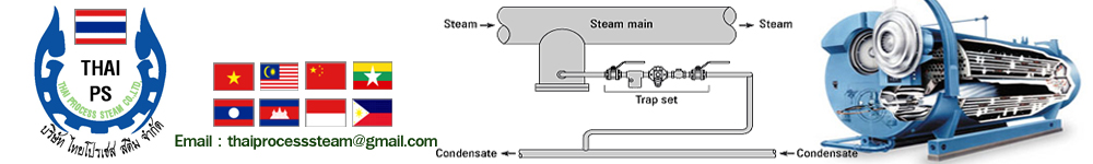 Thai Process Steam